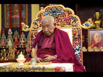 Taklung Tsetrul Rinpoche (132)