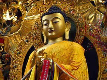 Buddha statue at the Vajra Vidya Institute in Sarnath, Uttar Pradesh, India.